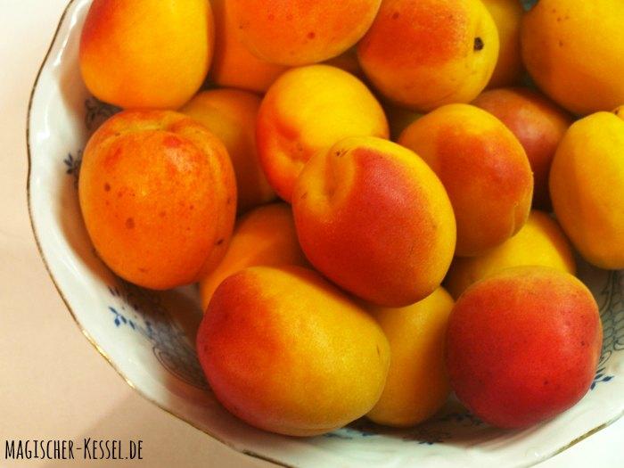 Aprikosen für ein arabisches Dessert