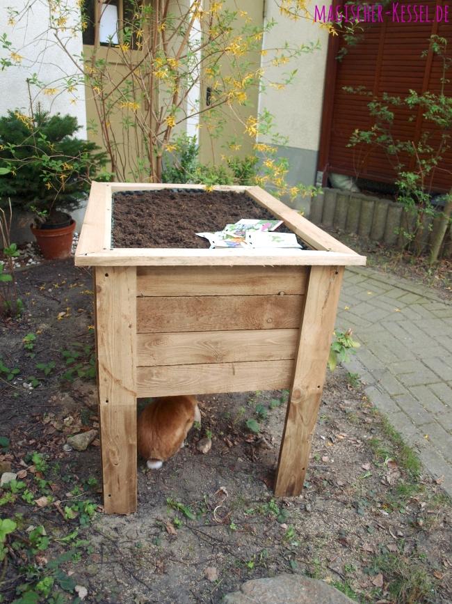 Gemüse anbauen im Berliner Hinterhof: Hochbeet aus Holz
