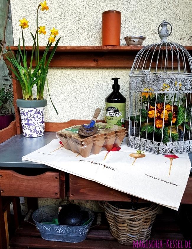 Hölzerner Pflanztisch mit Blumentöpfen, Anzuchttöpfen, Dünger und Pflanzen darauf